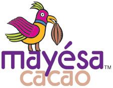 Mayesa_logo small (2).jpg