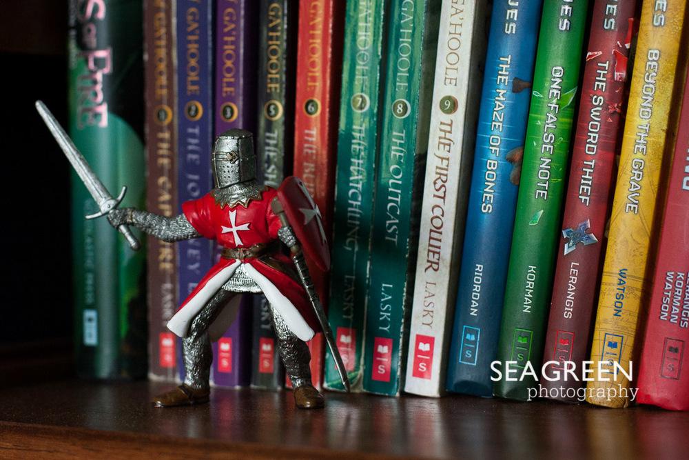 knightbooksseagreen
