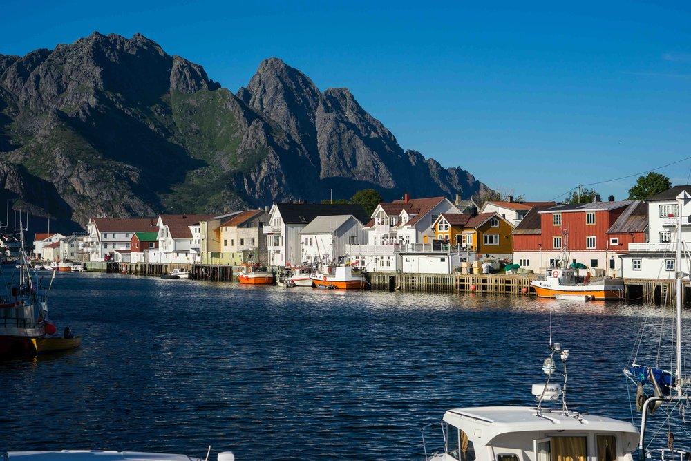 The port of Heningsvaer where we are based