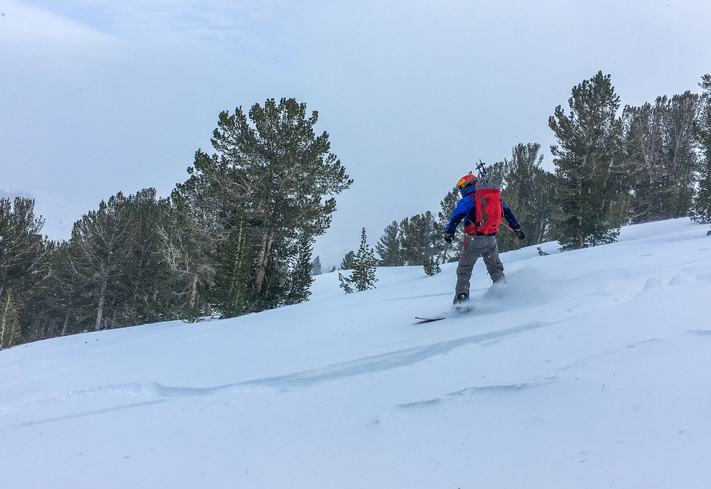 some fresh powder last week near virginia lakes