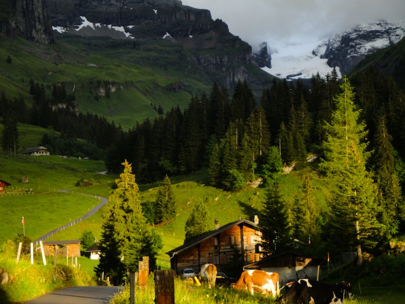 Evening view along the Berner Oberland trek