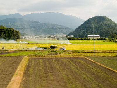 On the way to Kyoto - Japan's landscape
