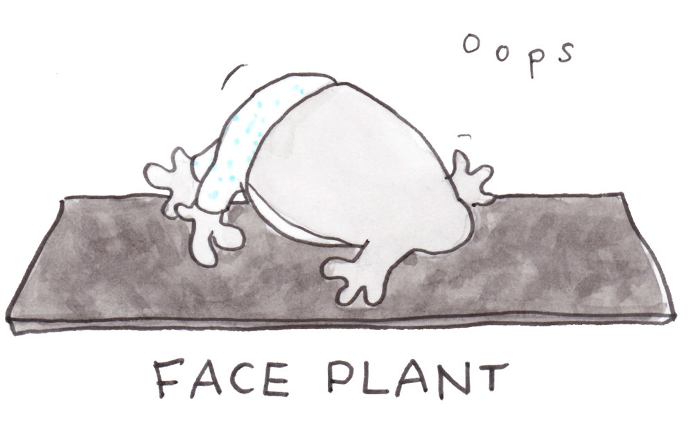 3-Face Plant 1.jpg