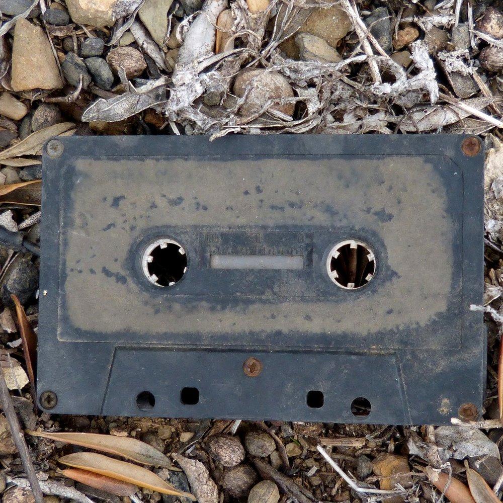 Sermon Archive - Looking for a sermon?