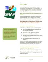 3 page SNAP brief