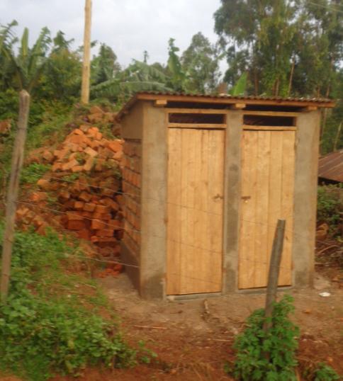 Toilets new.jpg