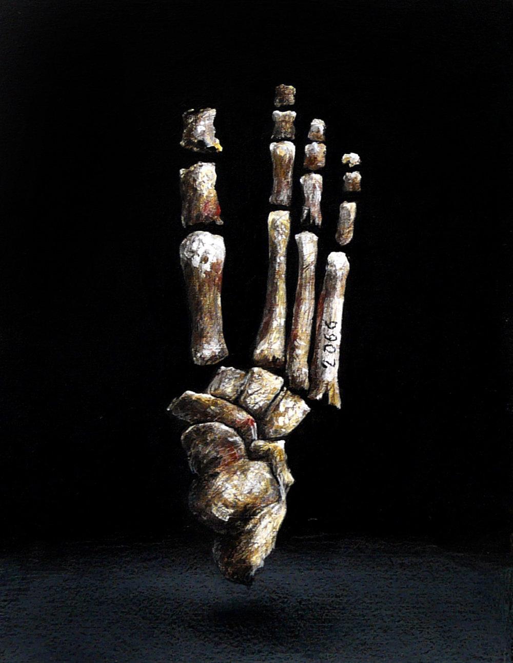 """""""Fósiles humanos"""" (Pie), 2016.  Pintura acrílica y lápices de color sobre tabla. 17 x13 cm."""