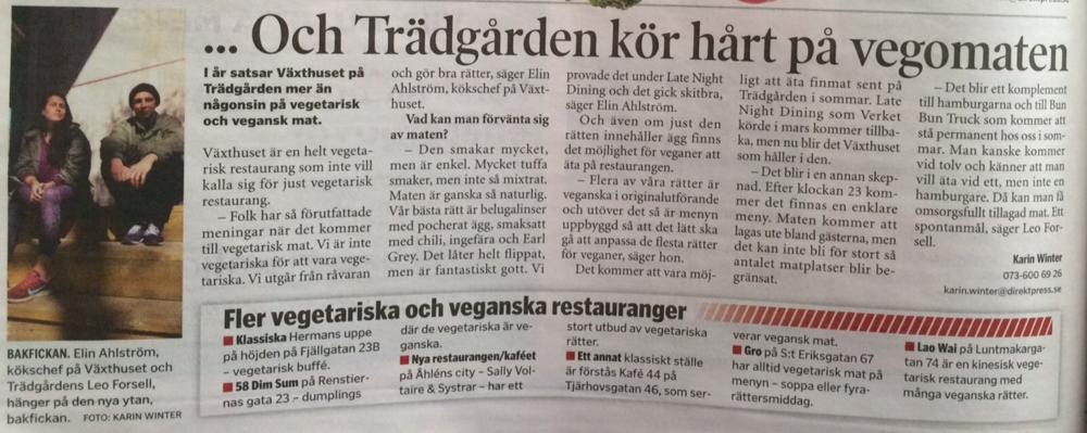 Södermalmsnytt intervju - Växthuset .png
