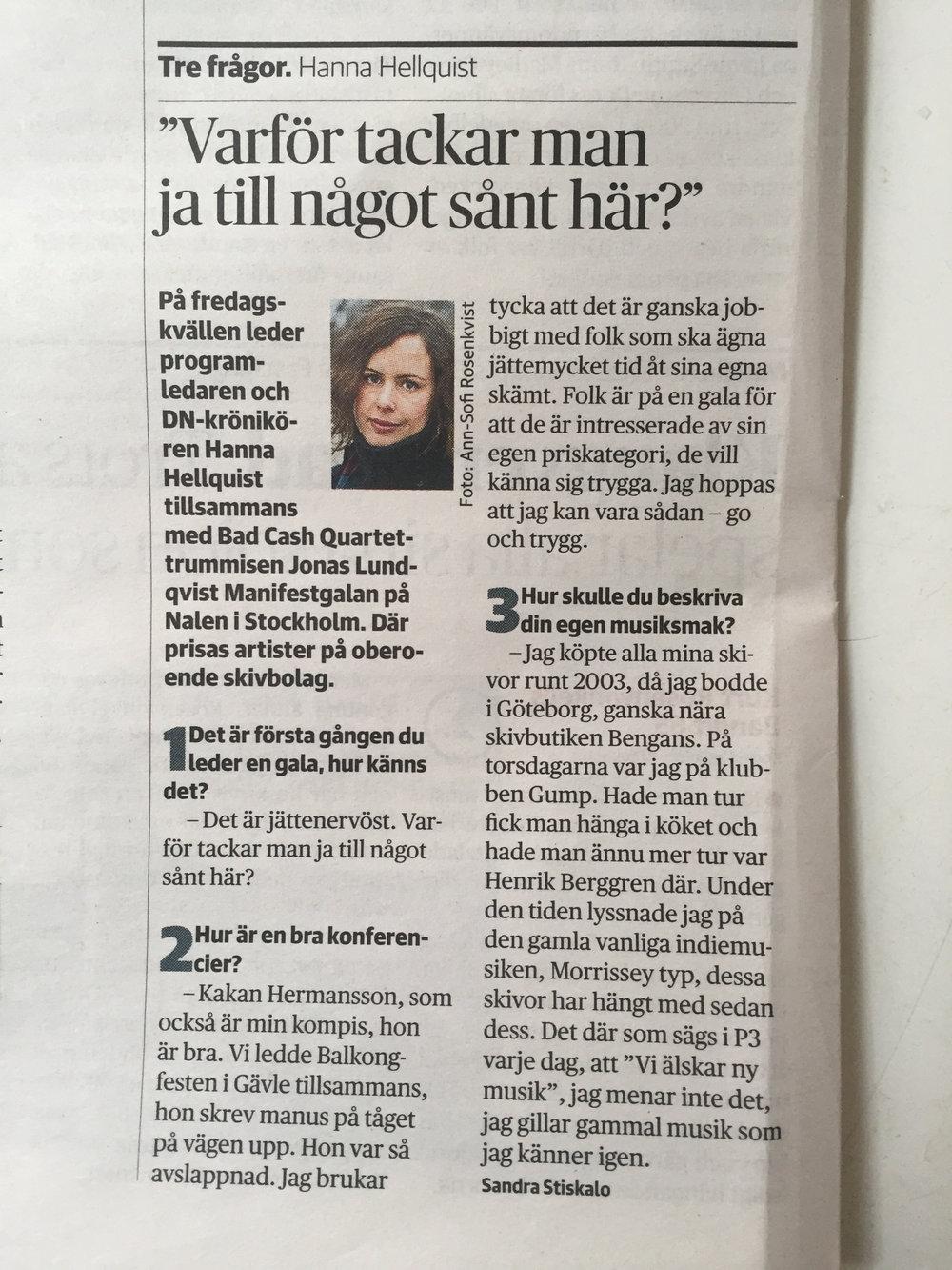 Intervju med Hanna Hellquist i DN.jpg