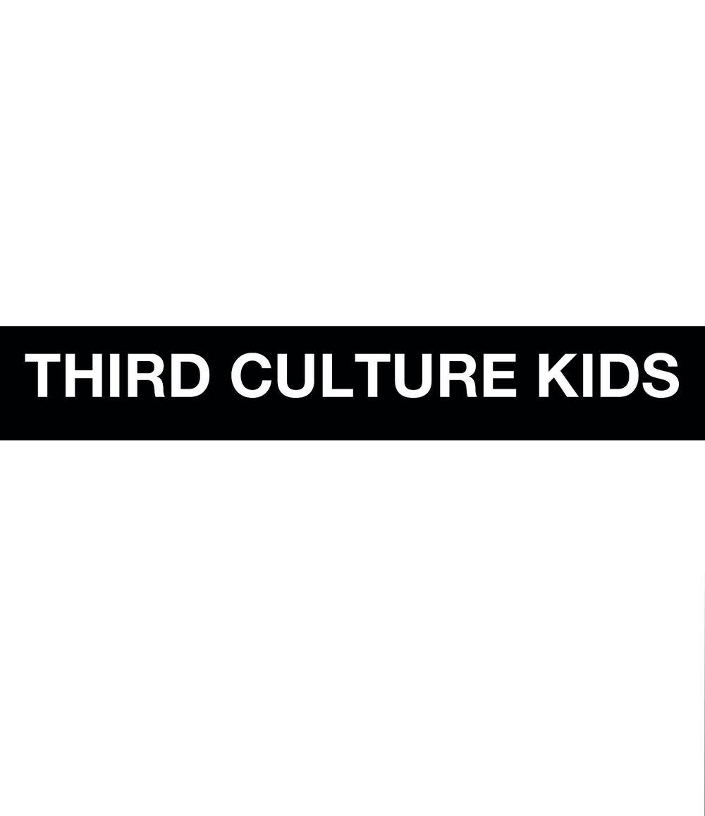 Omslaget till Third culture kids (Ordfront förlag)