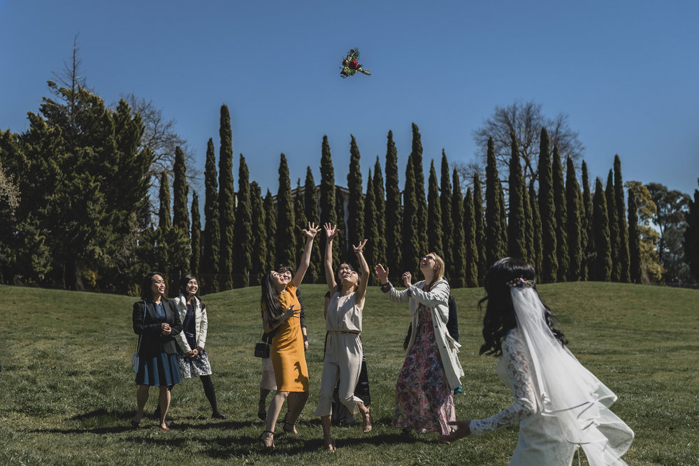 Bouquet Toss_Instagram_001.jpg