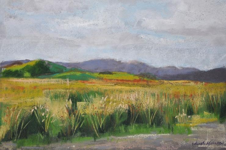 Scottish Moor