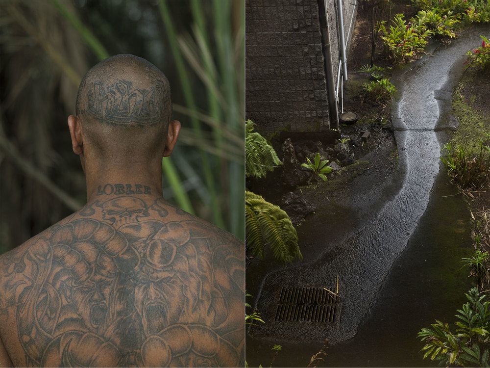 DORN&CARBONE_WEB_HAWAII_TAT_RIVER.jpg