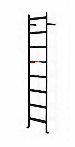 Steel Wall Mount Ladder No Rail Exensions Custom Made