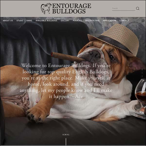 Entourage_600x600.jpg