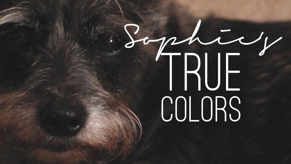 Sophie's True Colors Thumbnail.jpg