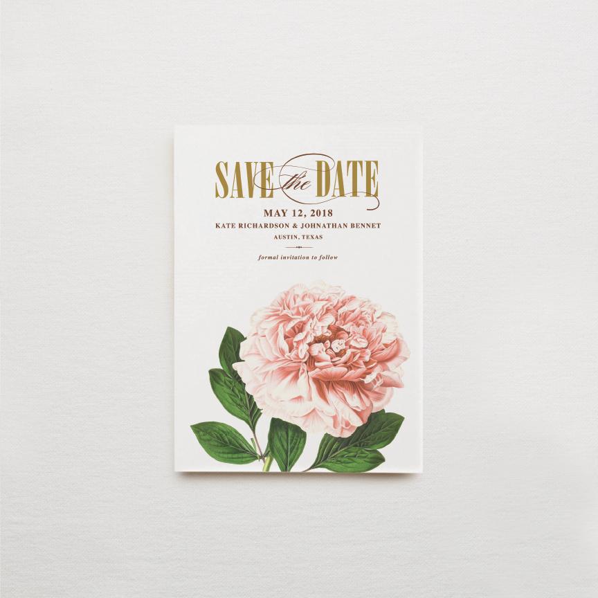 Individual Suite Pieces19.jpg