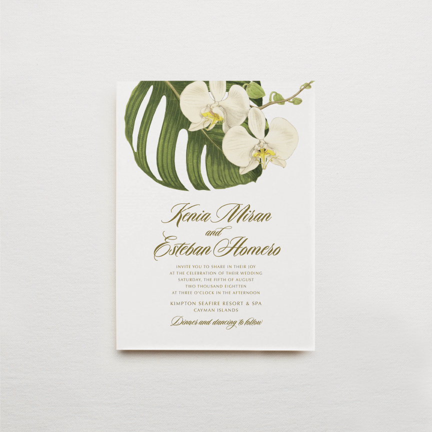 phalaenopsis-white-orchid-green-leaf-palm-fronds-tropical-flower-wedding-invitation.jpg
