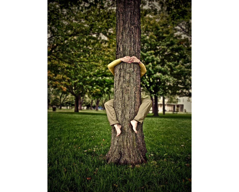 TreeHugger3C_FINAL.jpg