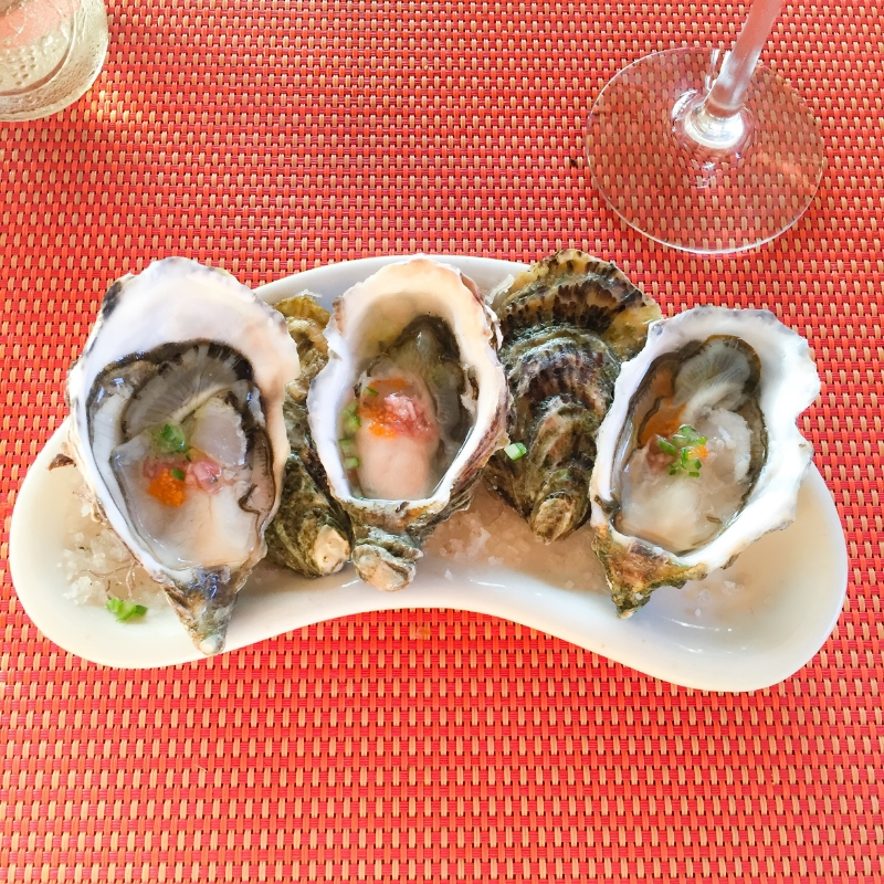 MonteXanic_ValleDeGuadalupe_Deckmans_ElMogor_FineDining_Foodie_Chef_Oysters_WineCountry_WineTasting.jpg