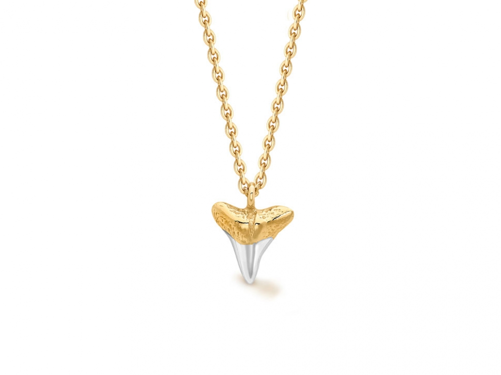Missoma Shark Tooth Necklace