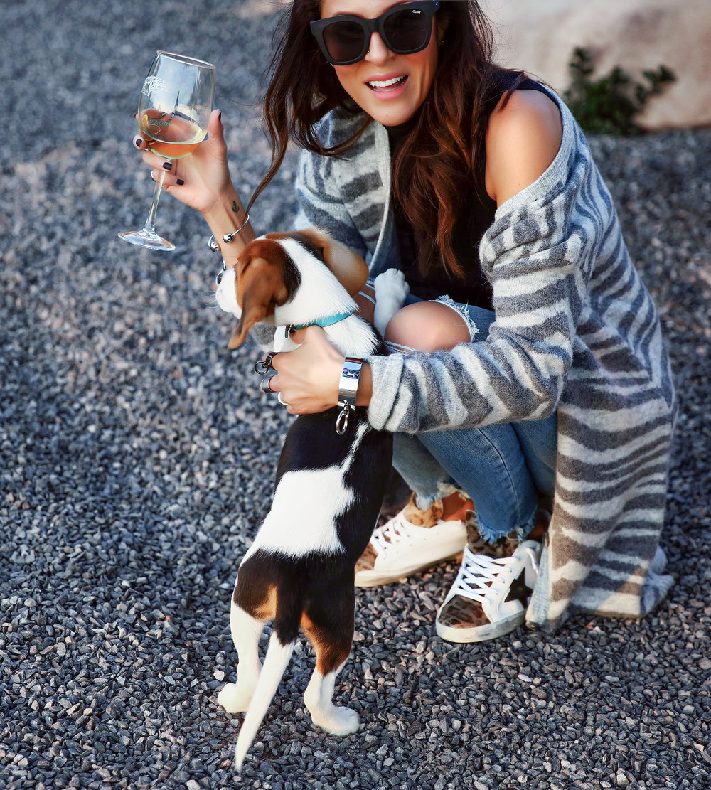 Brunette Woman in Spring Fashion with cute Puppy