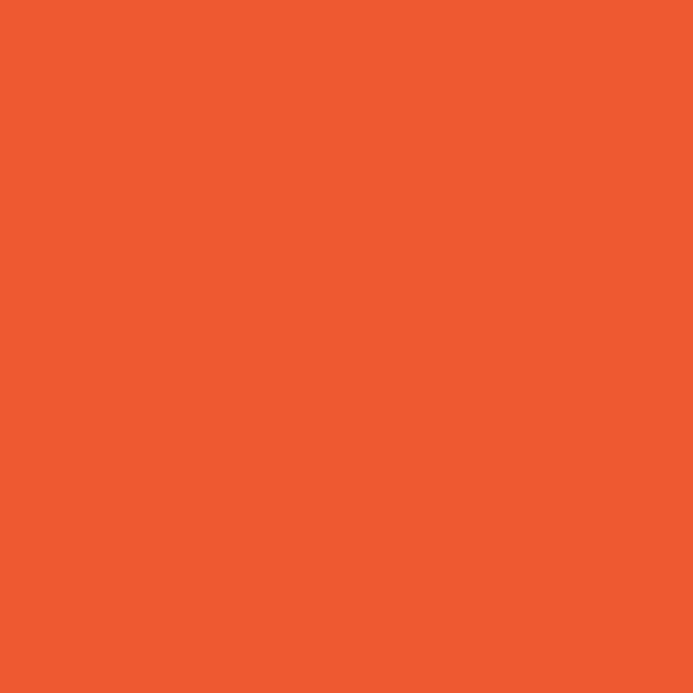 Orange   Pantone 165   HEX: # ED5A30  RGB: 237, 90, 48    CMYK: 0, 80, 90, 0