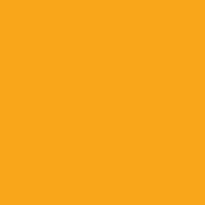 Gold  HEX: #f9a61a RGB: 249, 166, 26 CMYK: 0, 39, 100, 0