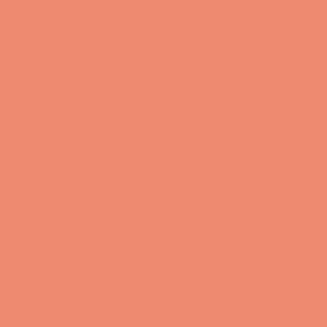 Salmon  HEX: #ed8a6f RGB: 237, 138, 111 CMYK: 2, 56, 58, 0