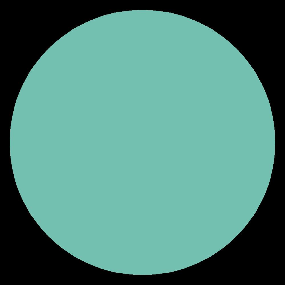 Pantone 570 U  HEX: #73c0b1 RGB: 115, 192, 177 CMYK: 55, 4, 36, 0