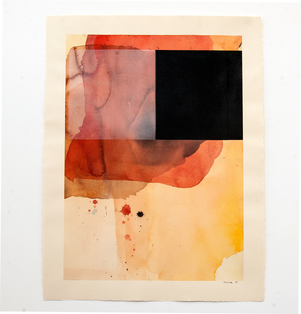 DANIEL BRICE, Untitled, 2015, charcoal, watercolor on paper, 30 x 22 inches