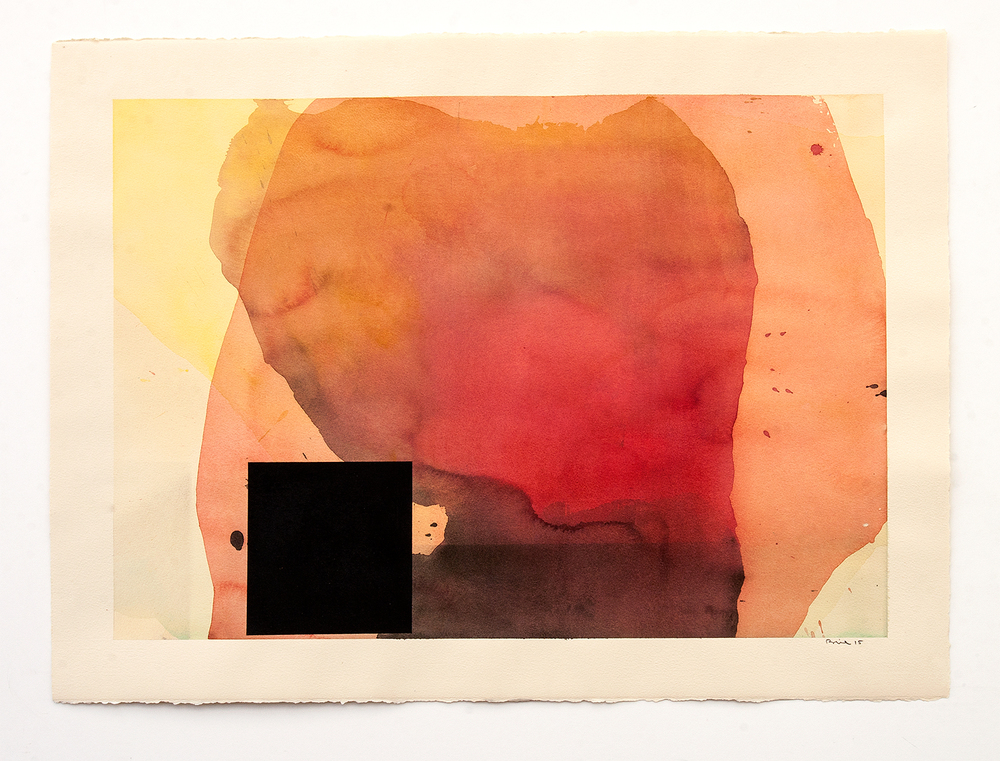 DANIEL BRICE, Untitled, 2015, charcoal, watercolor on paper, 22 x 30 inches