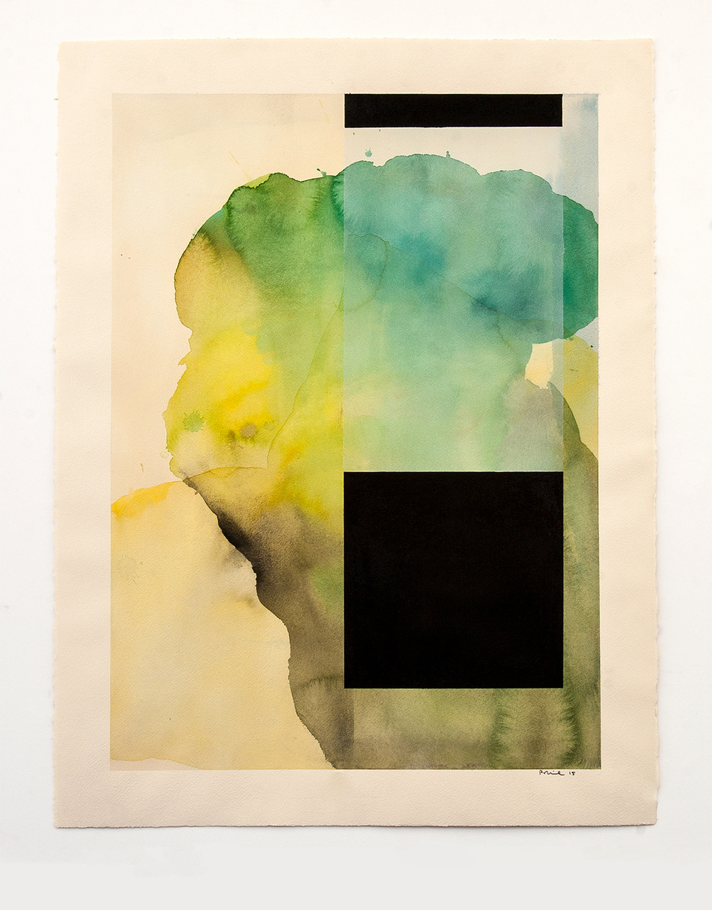 DANIEL BRICE, Untitled, 2015, watercolor, charcoal on paper, 22 x 30 inches