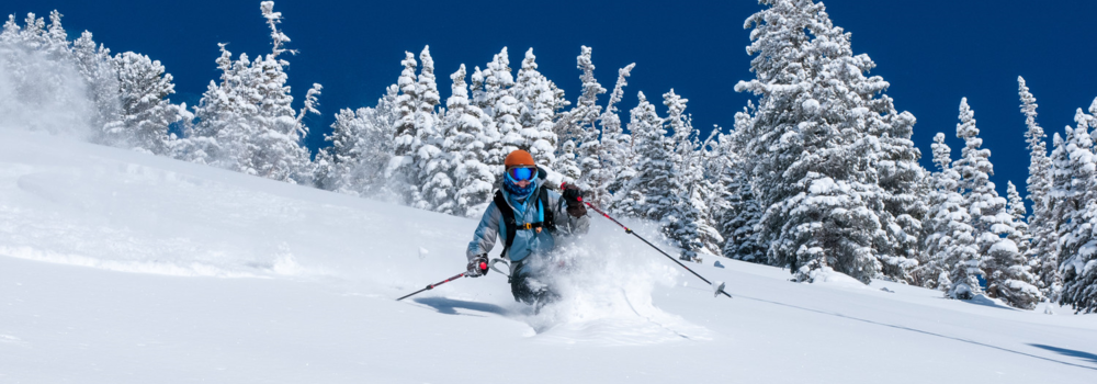 Fresh Adventures is a British Columbia ski tour powder.  Skier in Revelstoke, finding powder on their skiing tour in BC and Alberta.