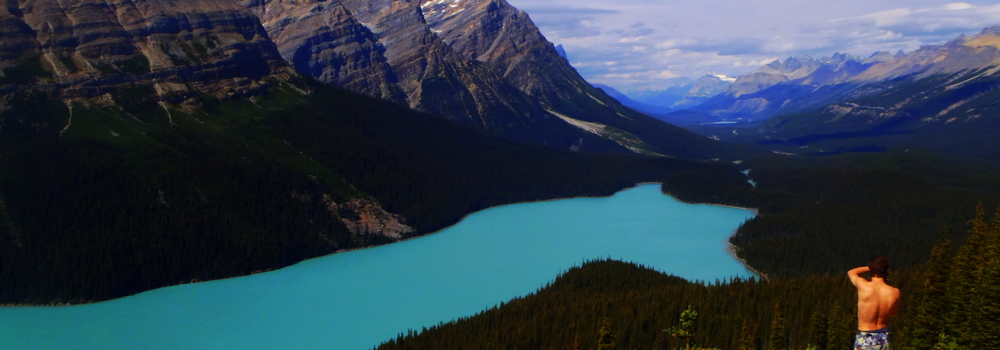 Tour member takes photo of Peyto Lake, during their adventure tour with Fresh Adventures in the Canadian Rockies.  We offer tours and adventures in BC and Alberta.  Our Western Canada adventure tours are great for hiking, skiing, whale watching and rafting.