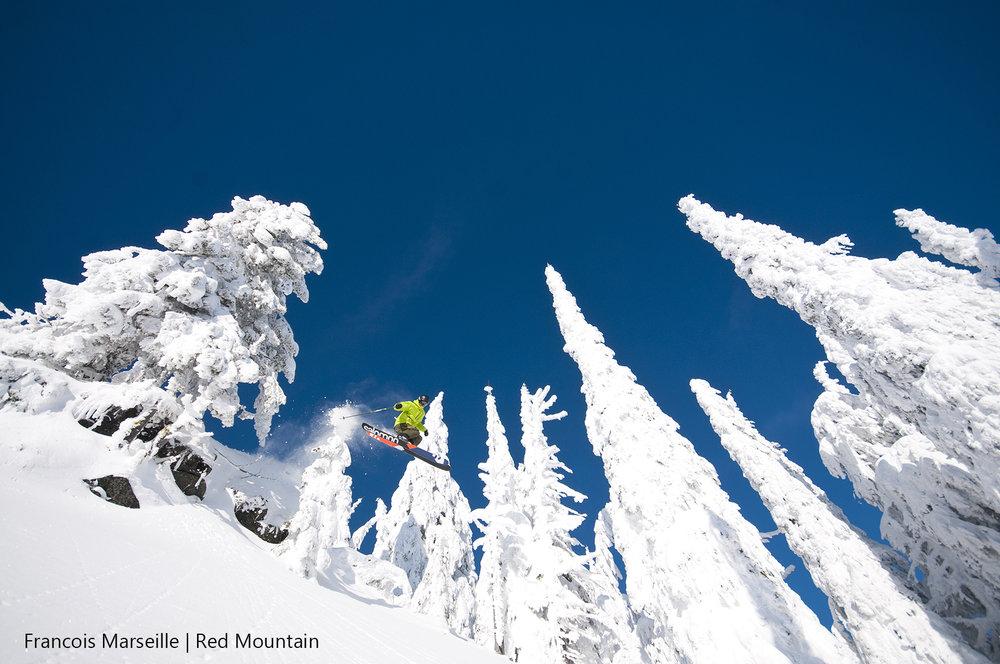 REDTrees&Powder-3-©marseille.jpg