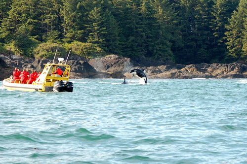 Tofino adventure tours with Ocean Outfitters