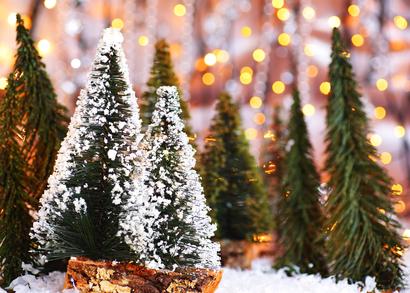 christmas forest 2.jpg