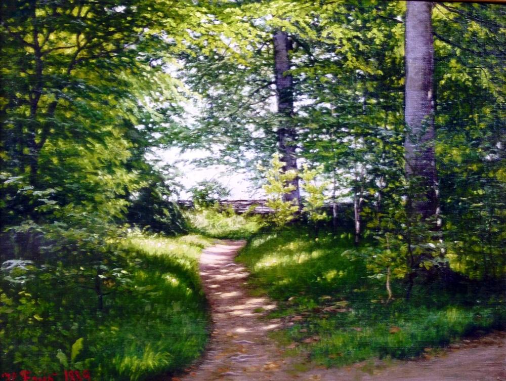 I skoven.JPG