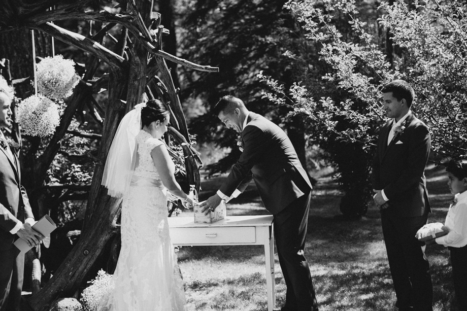 Session Nine Photography, Weddings, Greer, AZ-44