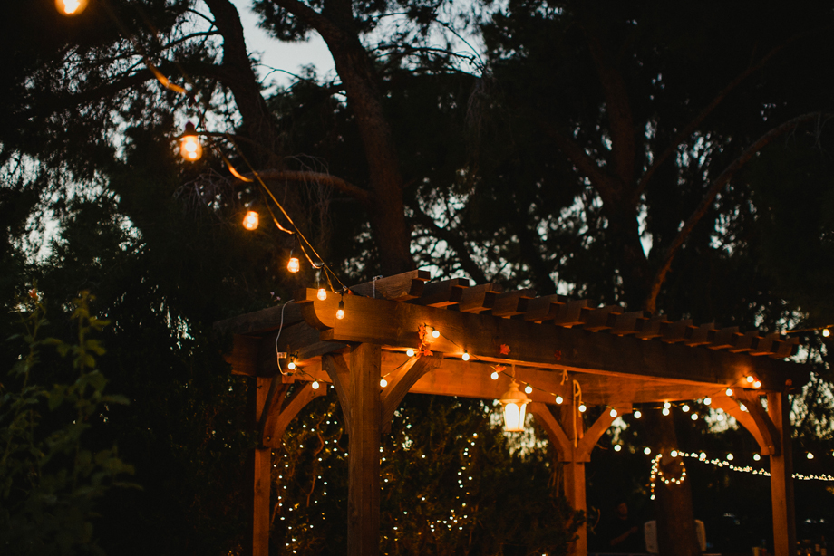 Jay and Jess, Weddings, Gilbert, AZ-77