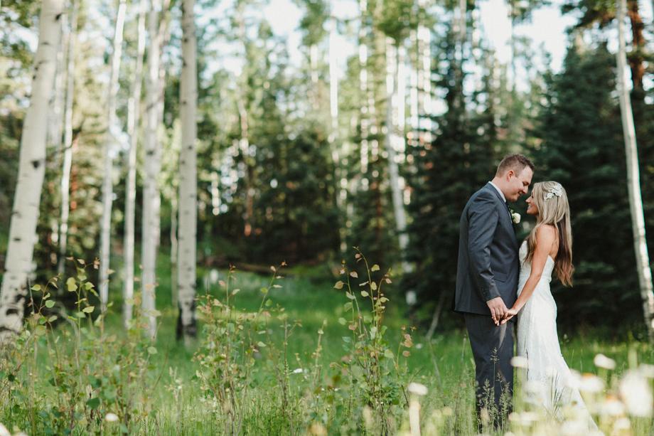Session Nine Photographers, Weddings, Telluride, CO-105