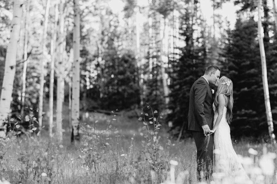 Session Nine Photographers, Weddings, Telluride, CO-106
