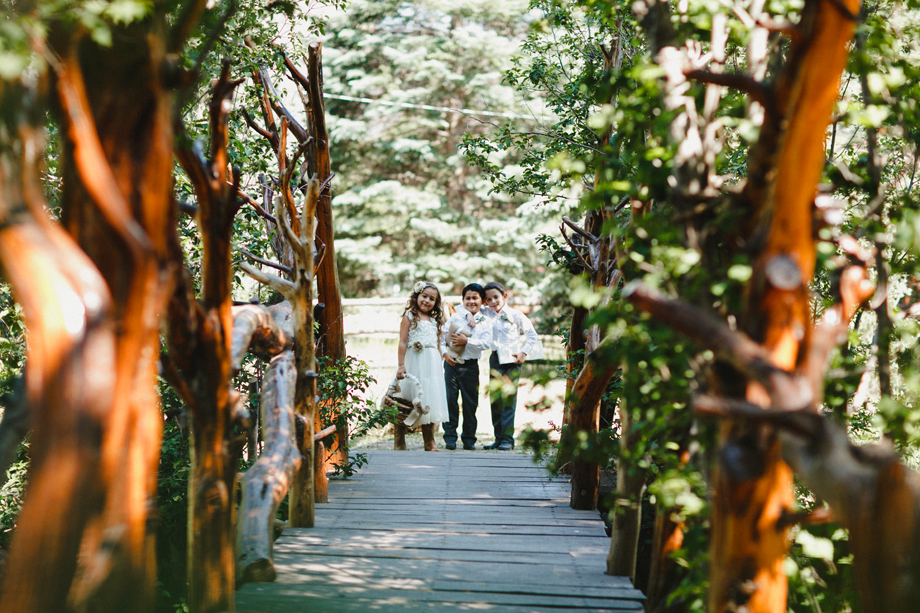 Session Nine Photography, Weddings, Greer, AZ-32