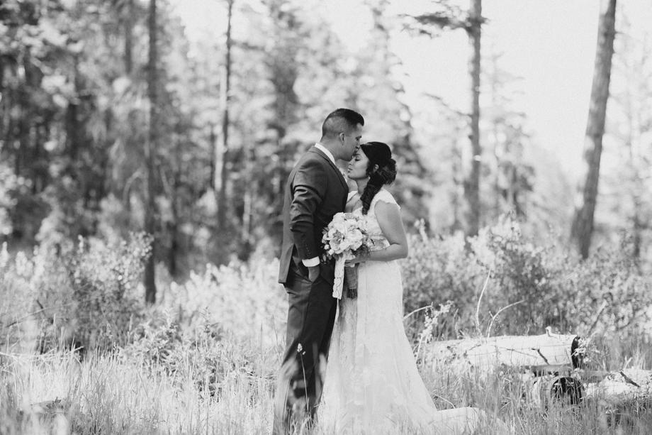 Session Nine Photography, Weddings, Greer, AZ-50