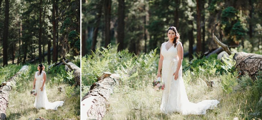 Session Nine Photography, Weddings, Greer, AZ-55