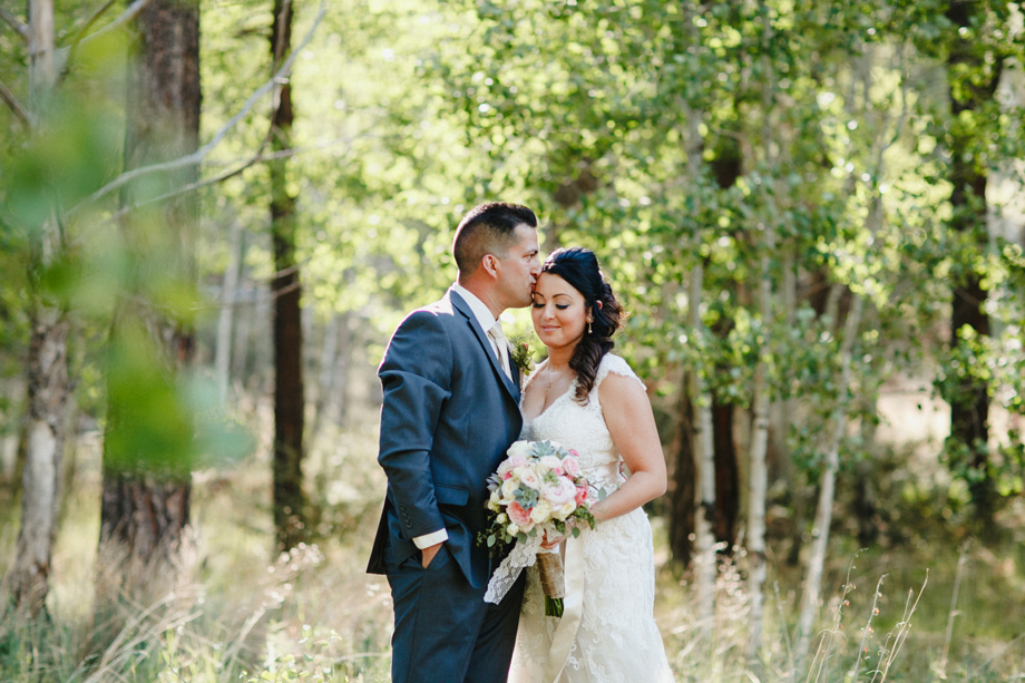 Session Nine Photography, Weddings, Greer, AZ-56