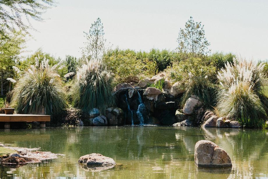 Jay and Jess, Weddings, Paradise Valley, AZ-2.jpg