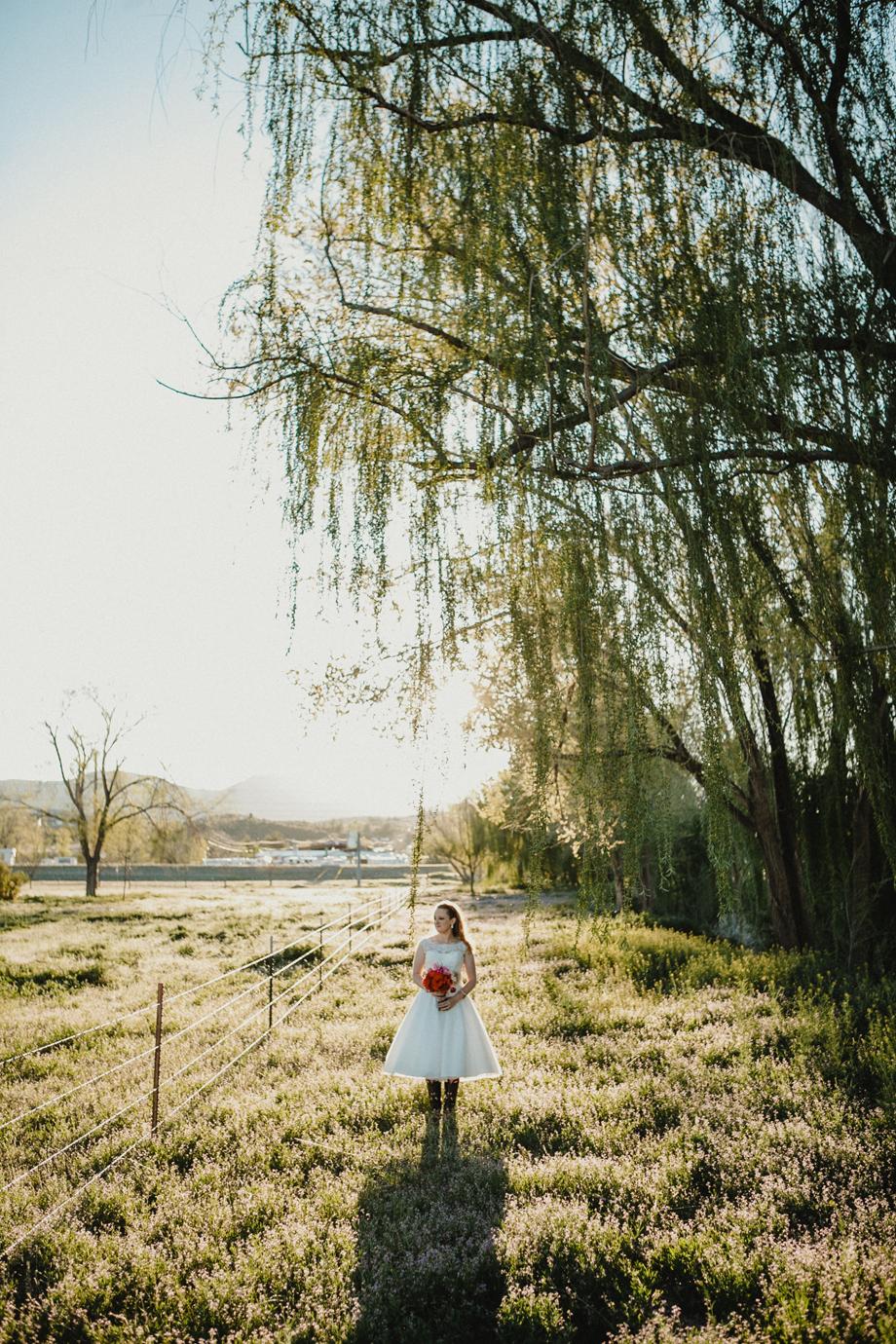 Jay & Jess, Weddings, Prescott, AZ-79.jpg