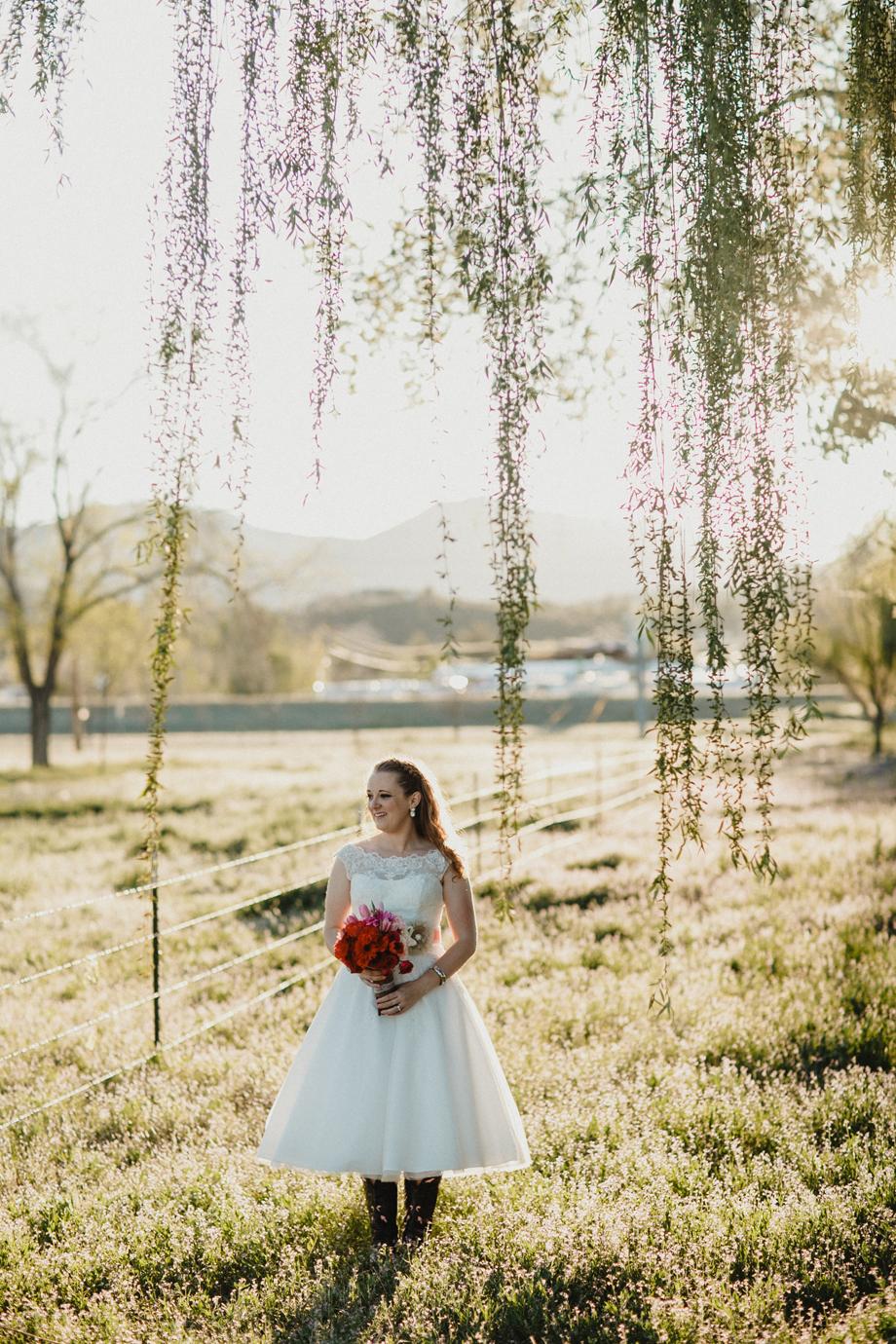 Jay & Jess, Weddings, Prescott, AZ-80.jpg